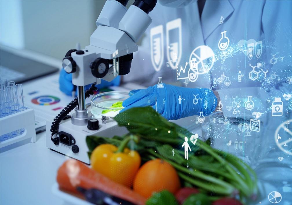 研究室で野菜を分析している写真